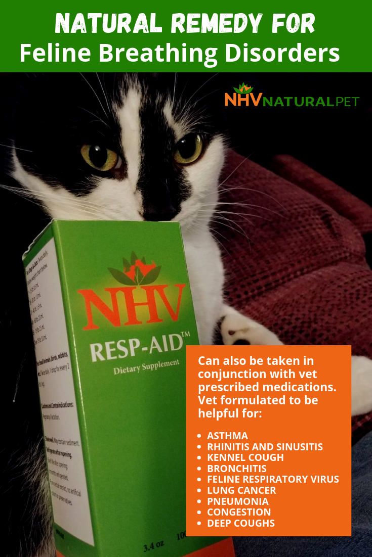 Resp Aid For Cats Natural Asthma Remedies Essential Oils For Asthma Asthma