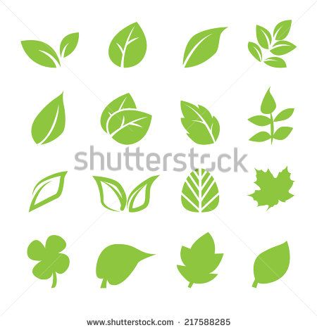 Leaves Shape Photoshop Free Vector For Free Download About