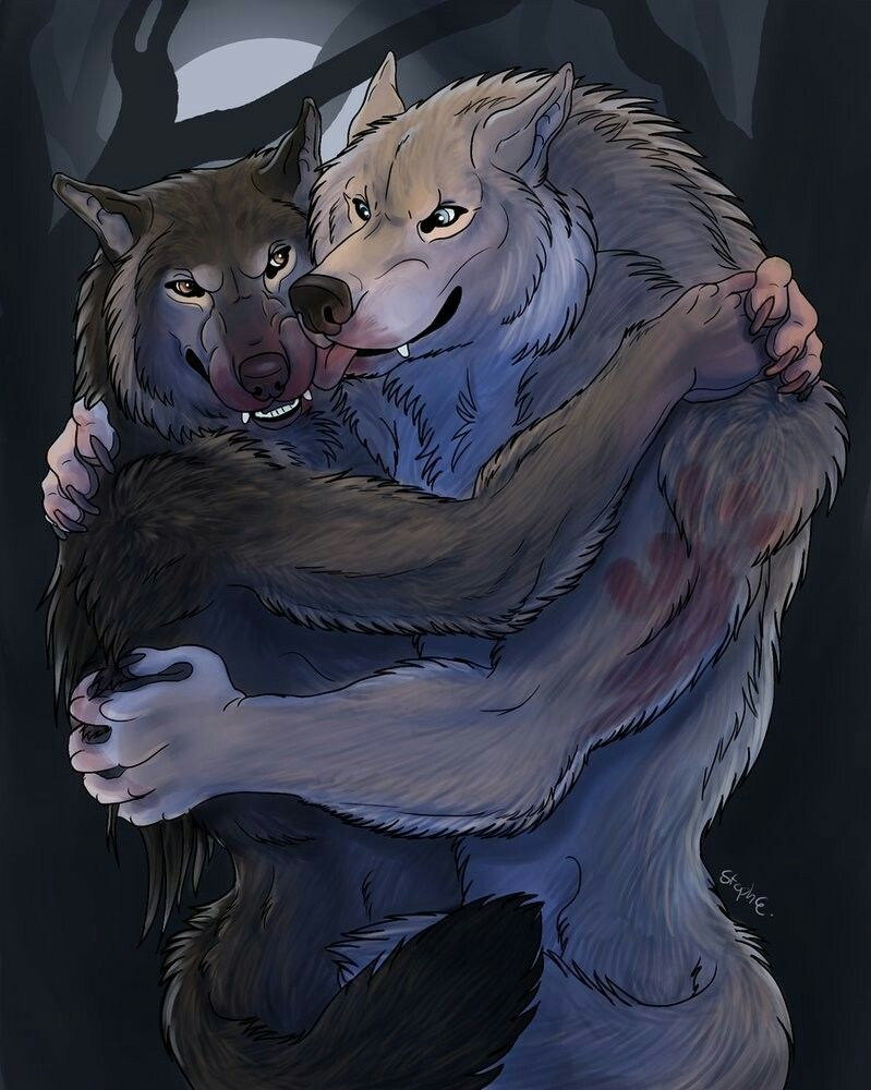 Loup pluie porn