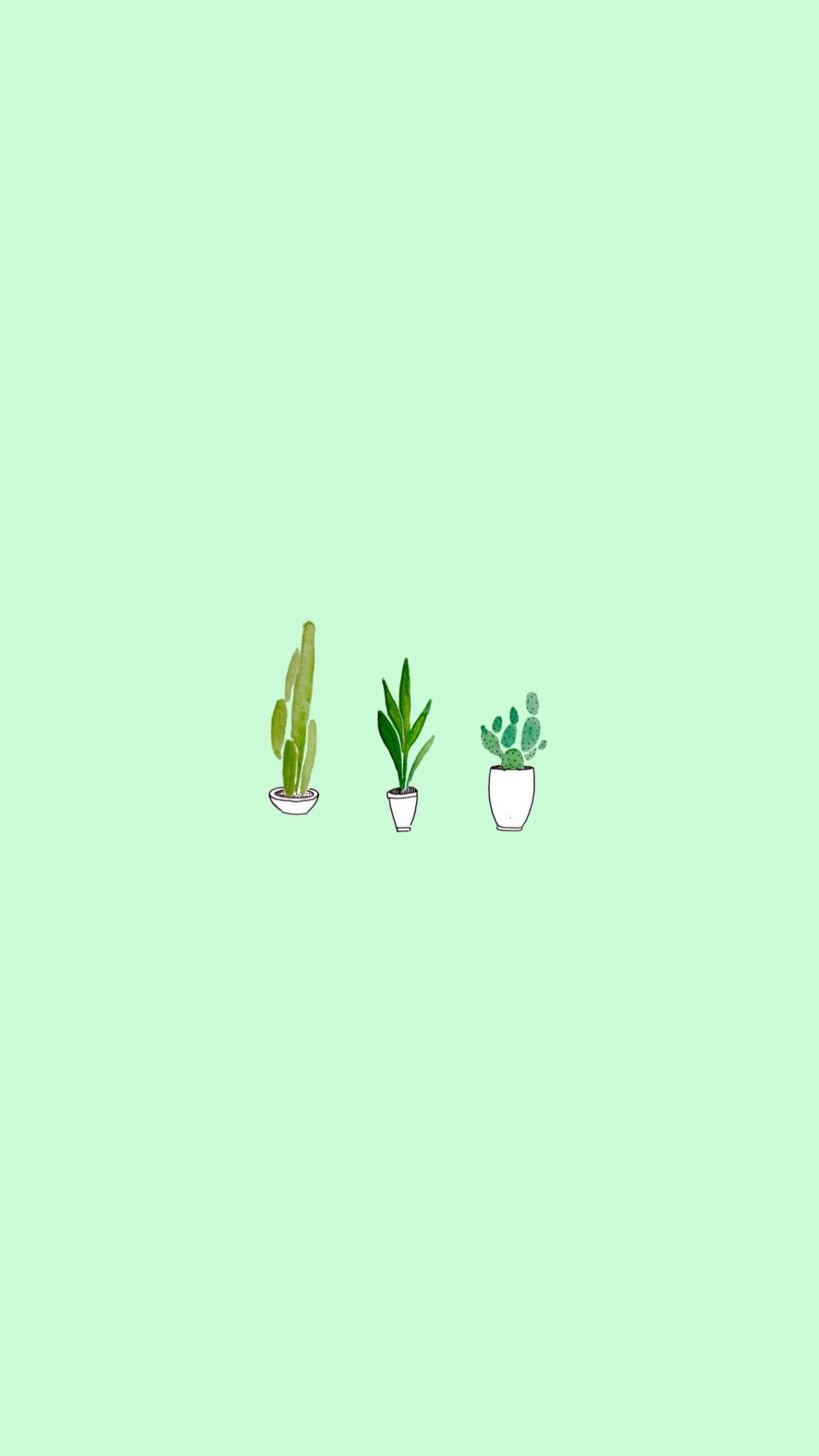 83 Green Aesthetic Wallpaper Quotes In 2020 Iphone Wallpaper Green Mint Green Wallpaper Iphone Mint Green Wallpaper