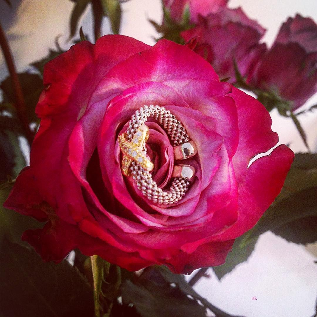 RING Around the roses... #Autumn #aw15 #newcollection #rings #Jewellery #jewellerystyling #925silver #madeinitaly £79 #rings #fblogger #accessories #yellowgold #cz #cubiczirconia #bridal #weddingjewels #weddings #jewelleryforbrides #flowers #blooms #roses