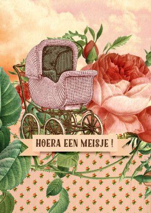 Hoera een meisje! + rozen 1