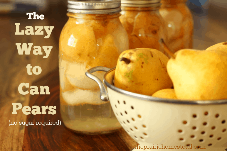 How to Can Pears Without Sugar Recipe in 2020 (With