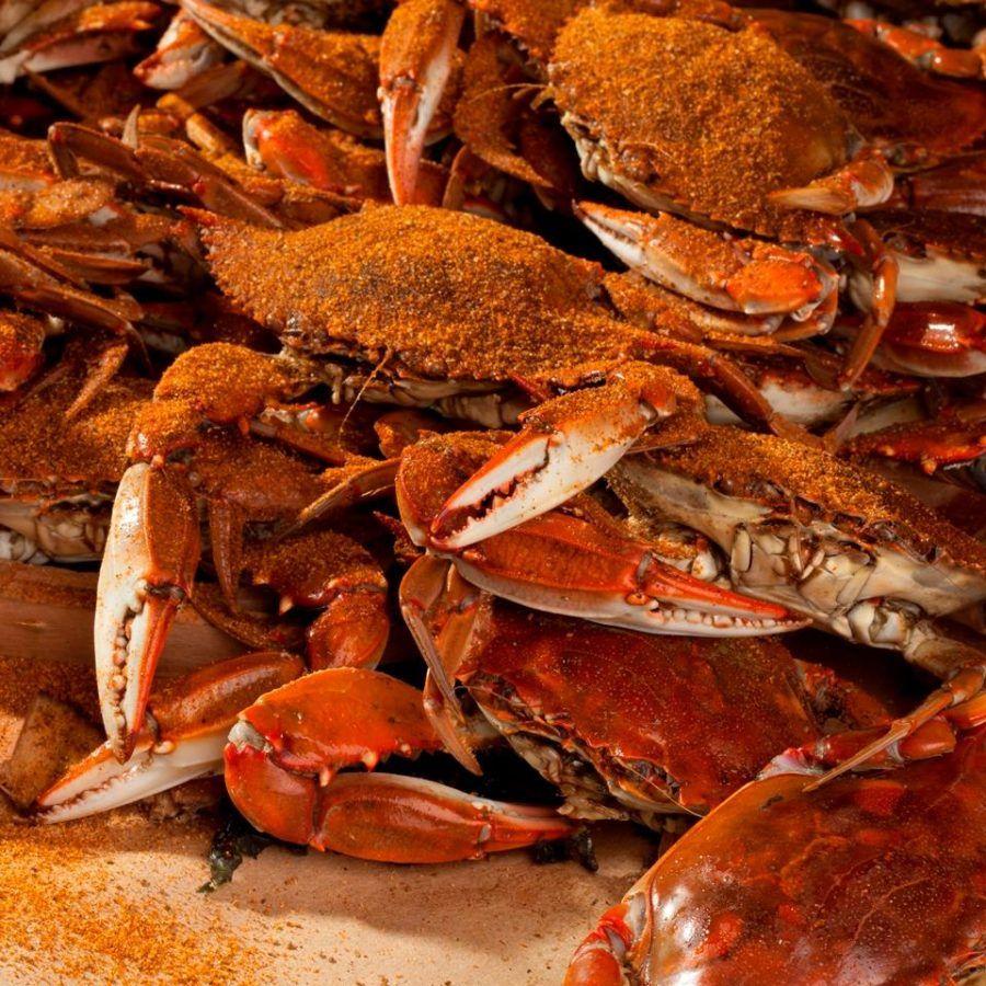 Best ocean city seafood restaurants to eat maryland