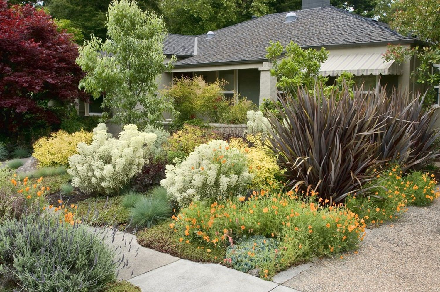How Much Did It Cost to Landscape Your Yard?   Garden ...
