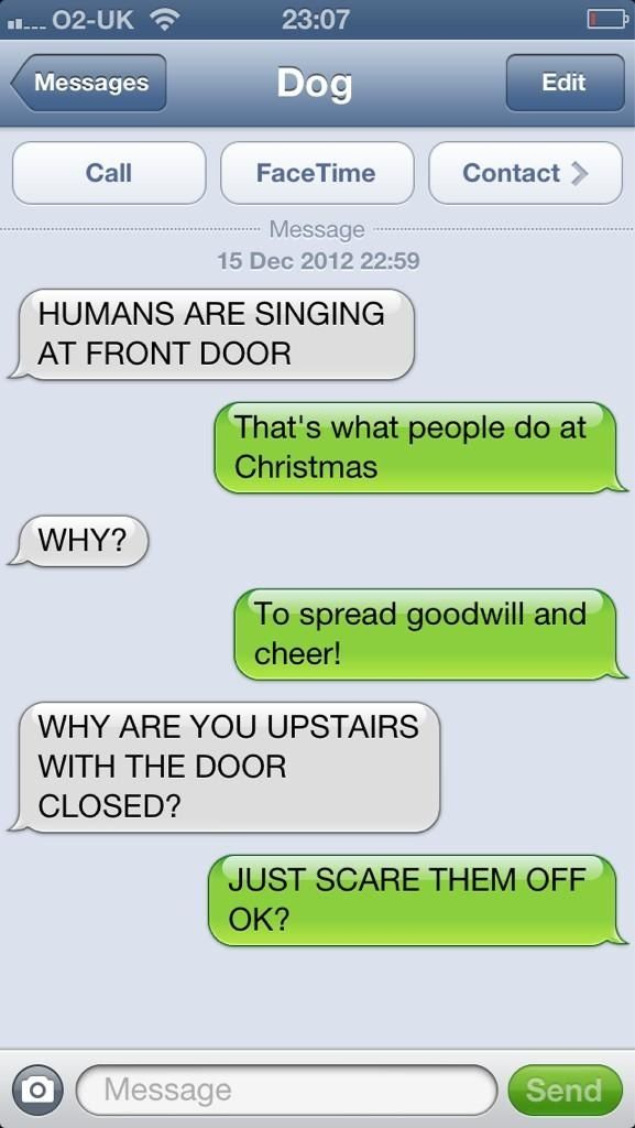 Last Minute Christmas Shopping Funny Dog Texts Funny Texts