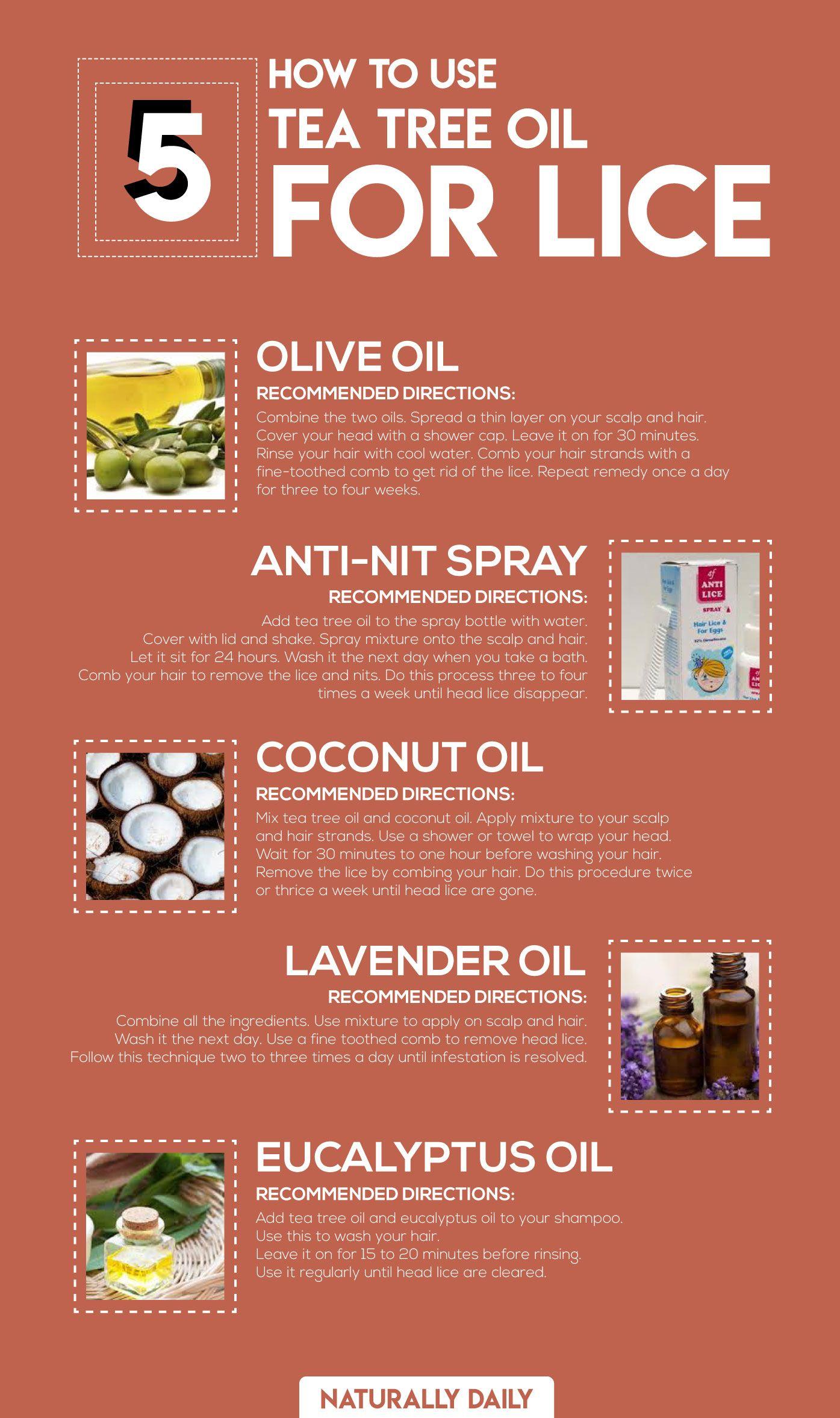9c669d75a0335d1198b6bf74658007c7 - How To Get Rid Of Head Lice With Baby Oil
