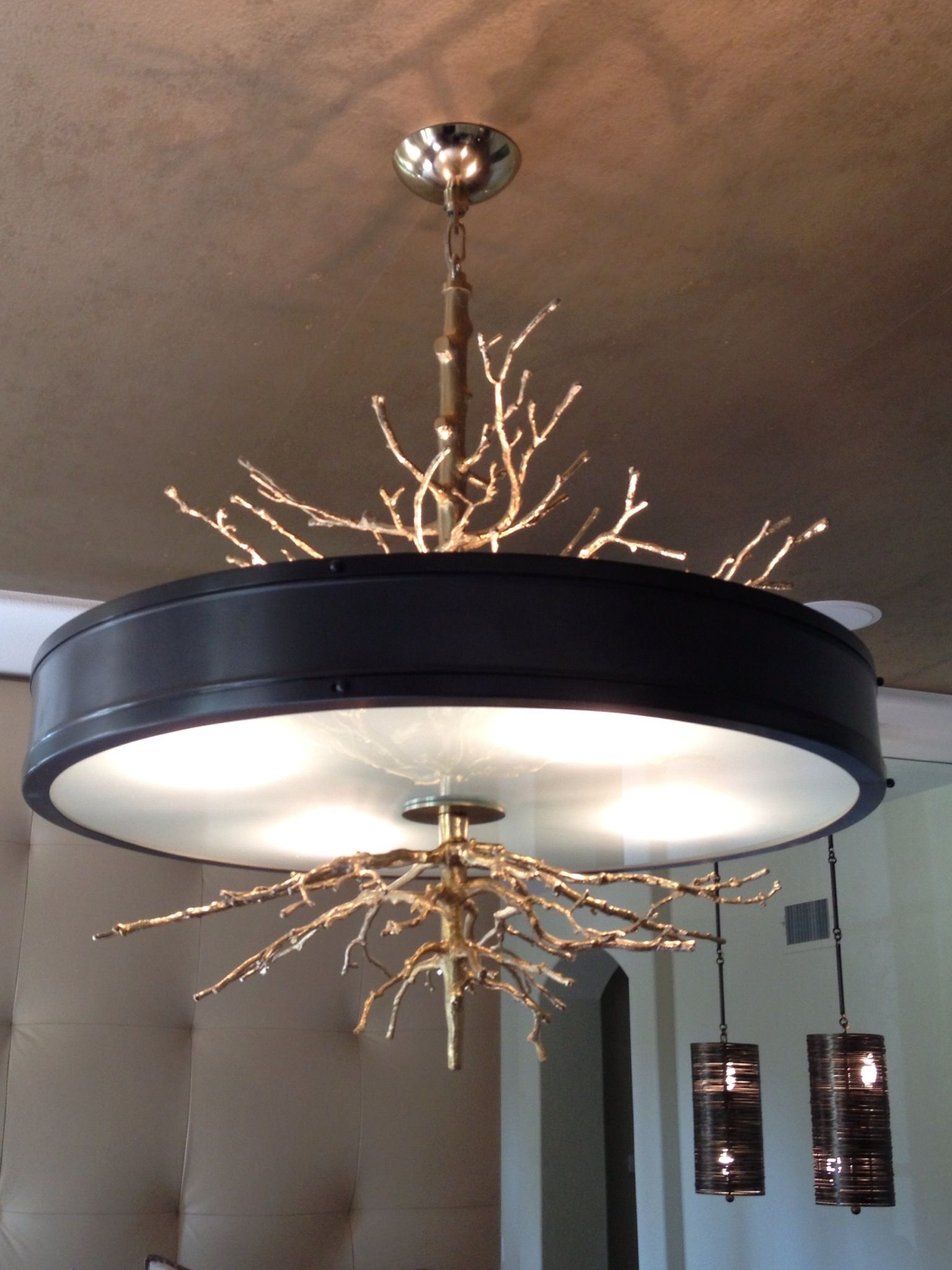 Contemporary and organic. A very unusual chandelier. Perfect for a ...