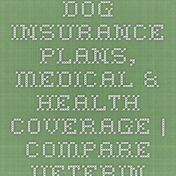 Dog Insurance Plans Medical Health Coverage Compare