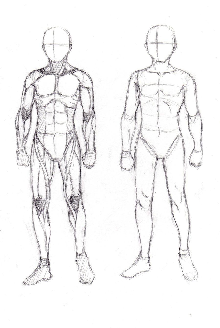 Anatomystudymusclesbyaurinyag 9001341 Drawing Tips