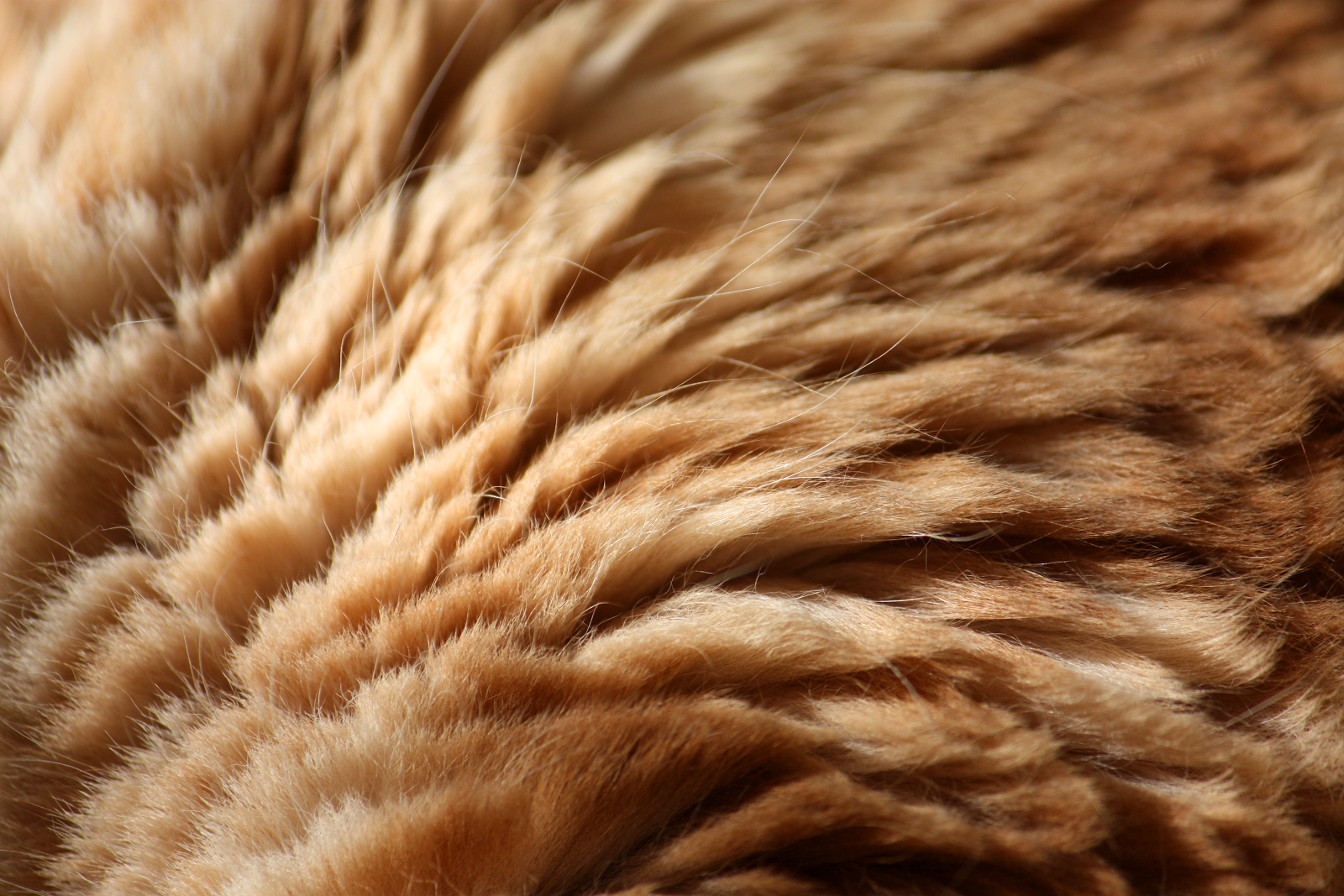 Questioning Quality A Guide To The Best Luxury Fabrics Fur Textures Fur Background Brown Aesthetic