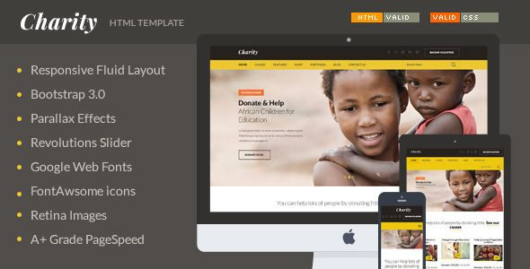 ThemeForest - Charity v10 - Nonprofit NGO Fundraising HTML - fundraiser template free