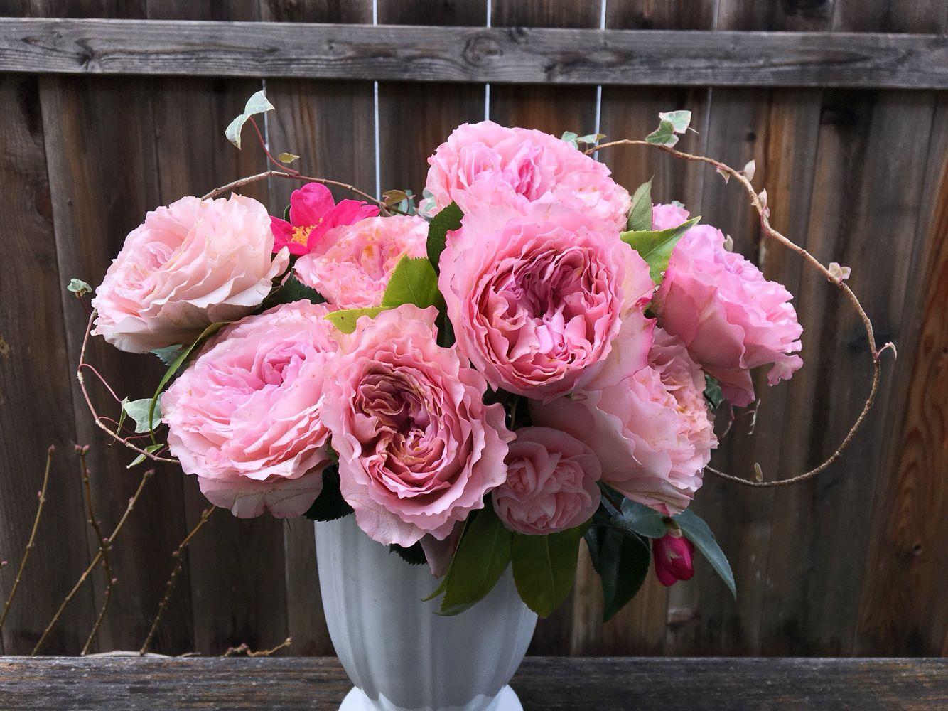 Prettiest Ruffle Pink Garden Roses Floral Centerpieces Pinterest