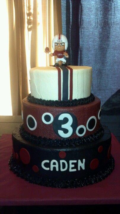 Carolina Gamecock Cake Birthday Party Ideas Pinterest