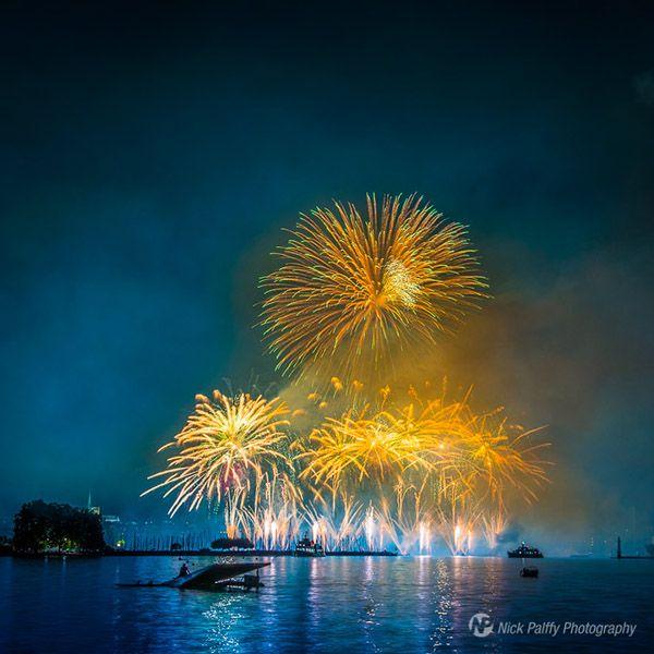 Fireworks by Nicholas Palffy, via Behance