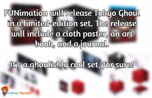FUNimation will release Tokyo Ghoul in a limited-edition set. The release will include a cloth poster, an art book, and a journal.   It's a ghoulishly cool set, for sure!