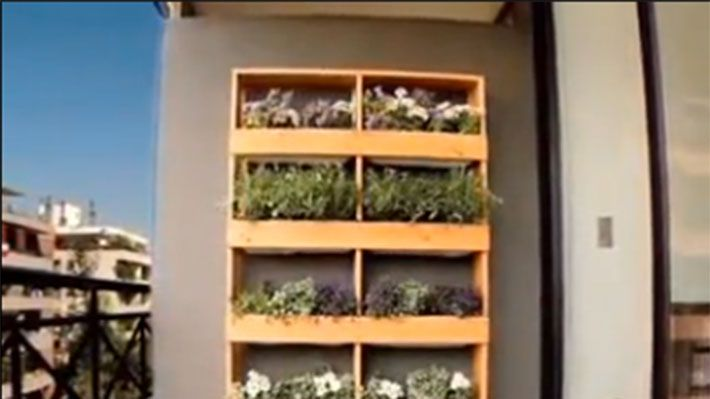 Los muros de una terraza o patio pueden convertirse en for Muros verdes verticales
