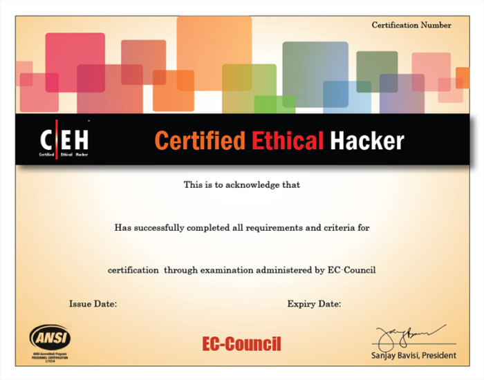 What Is Ethical Hacking Is Ceh Essential Information Security Governance Security Audit Risk Management