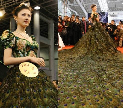 Peacock Wedding Gown From Korean Fashion Exhibition Extravagant Wedding Dresses Most Expensive Wedding Dress Expensive Wedding Dress