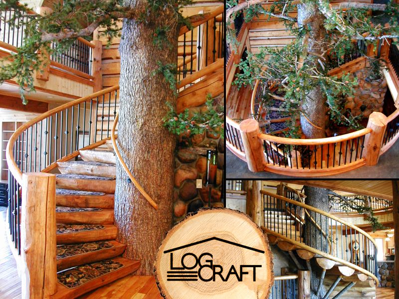 Best Amazing Tree Trunk Spiral Staircase Cosy Canadian Home 640 x 480