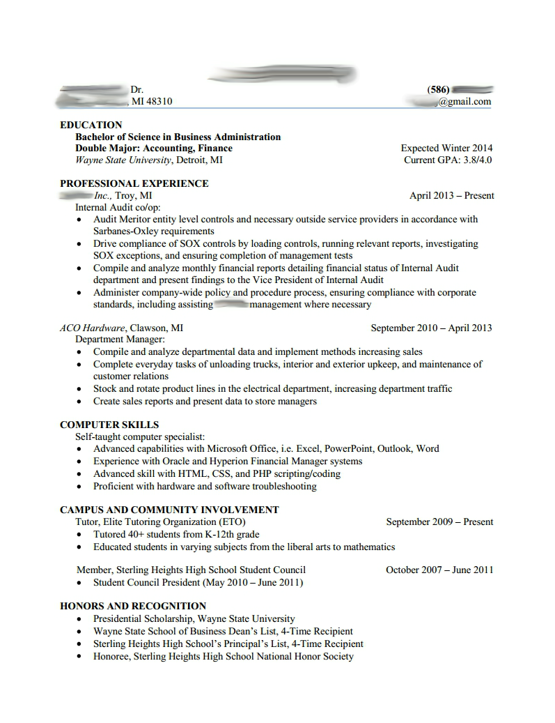 Cv Template Big 4 Professional resume examples