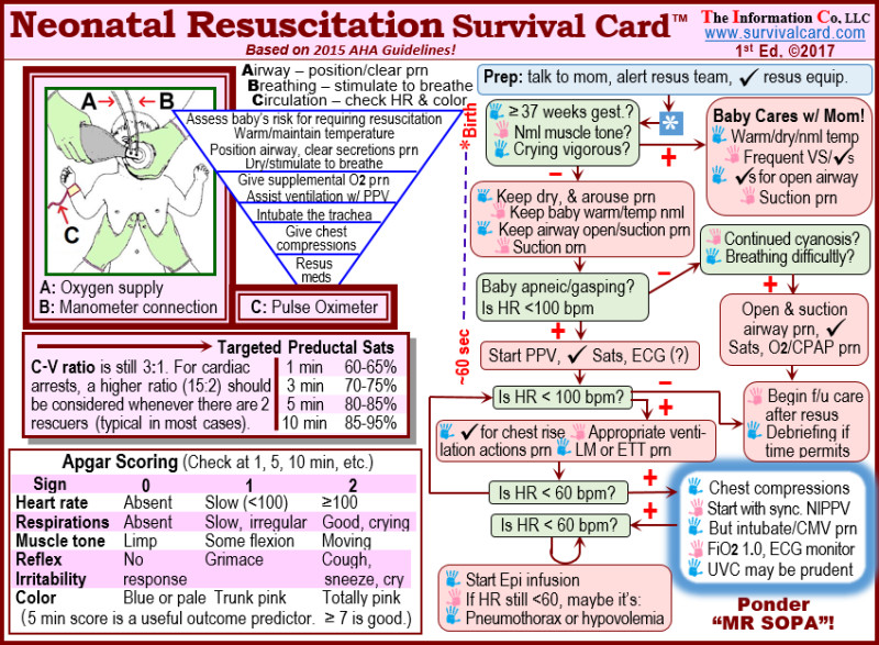 ACLS Quick Review Study Cards, ECGs Made Easy Study Cards ...
