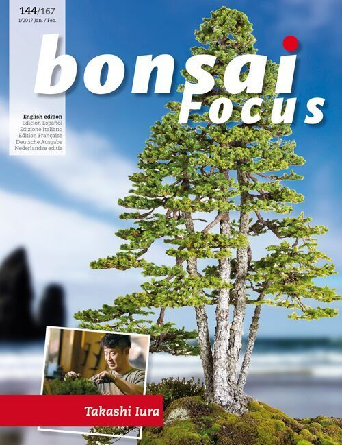 Noelanders Trophy Xvi The International Bonsai Magazine Bonsai Edition Books Magazines