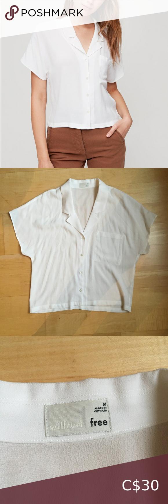 Shawna blouse aritzia Wilfred free