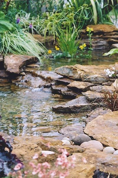 This Pond Is More Like A Stream Such A Beautiful Use Of Water And Plants Water Features In The Garden Waterfalls Backyard Outdoor Water Features