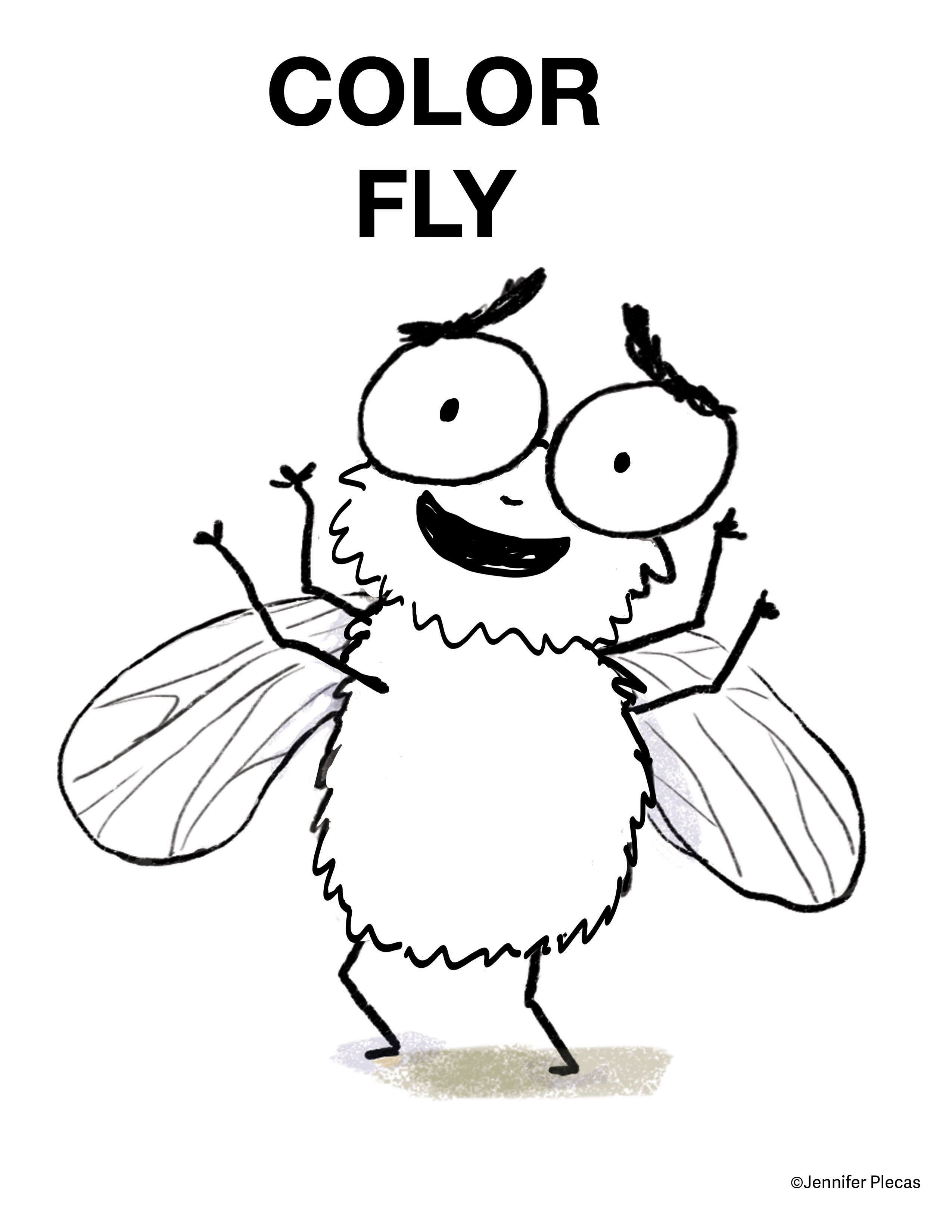 Color Fly Activity Sheet For I Fly The Buzz About Flies
