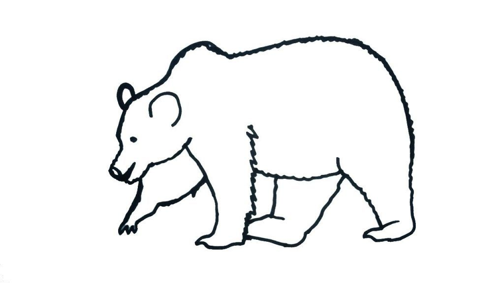 أجمل رسومات دب للتلوين جاهزة للطباعة بفبوف Bear Drawing Teddy Bear Drawing Bear Sketch