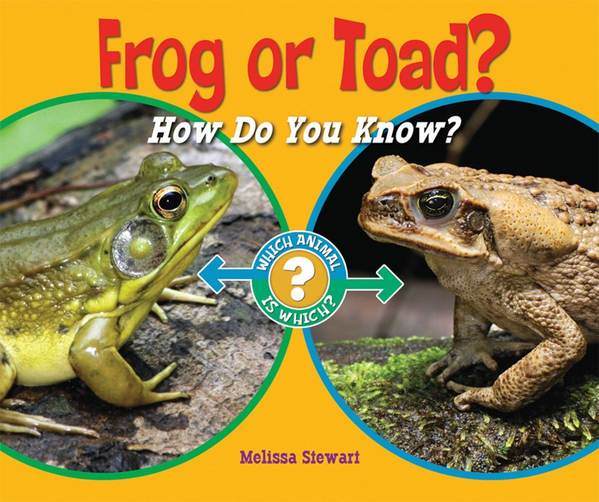 Frog or toad how do you know which animal is which price explore frog and toad children books and more pooptronica Gallery