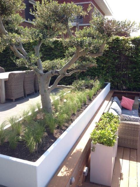 Large Platoflex Plant Container Huis En Tuin Tuin