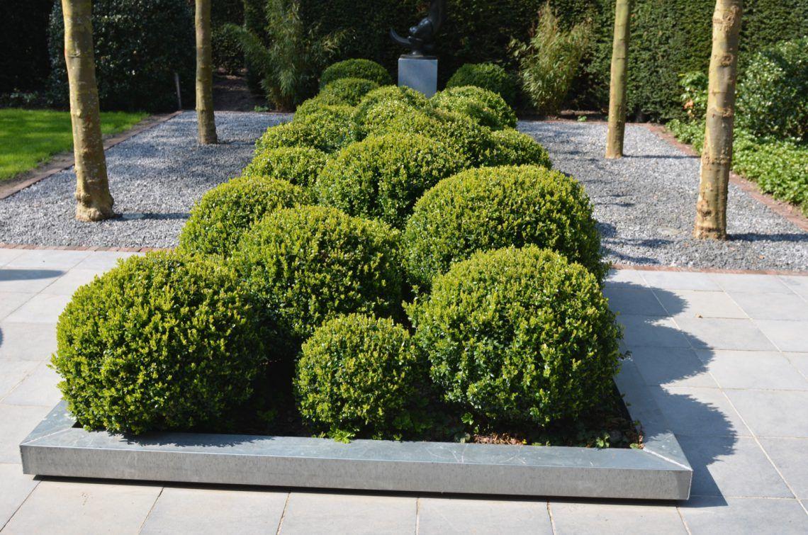 Groenseizoen tuinen ontwerpstudio moderne tuin met lounge
