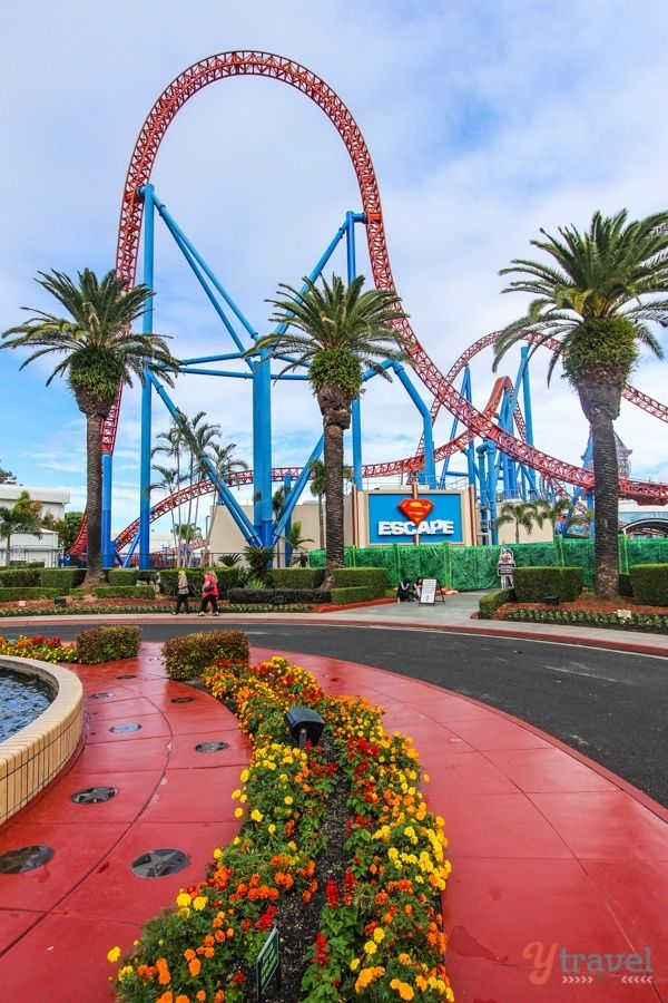 Movie World Gold Coast With Kids Best Day Ever Family Travel