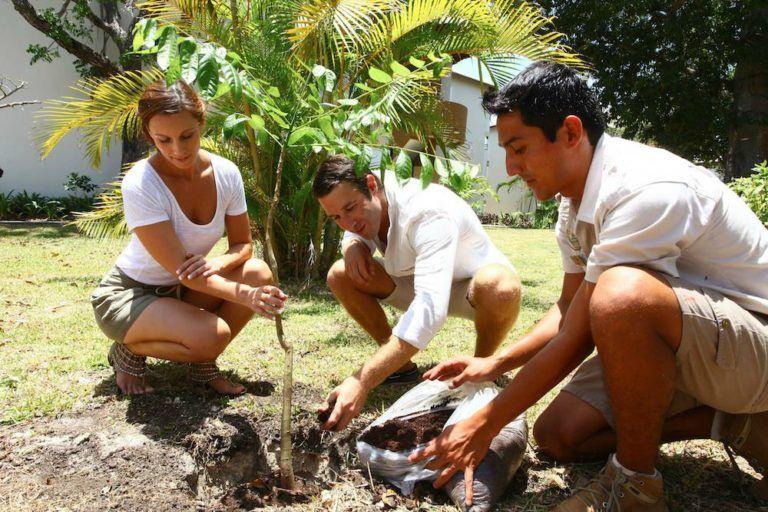 Sabías que Sandos Caracol recientemente fue recertificado por la Rainforest Alliance, reconociendo su compromiso para con el cuidado y preservación del medioambiente, así como con el turismo sostenible.  ¡Entérate de toda esta noticia en nuestra nueva entrada del Blog!  http://blog.sandos.com/sandos-caracol-rainforest/