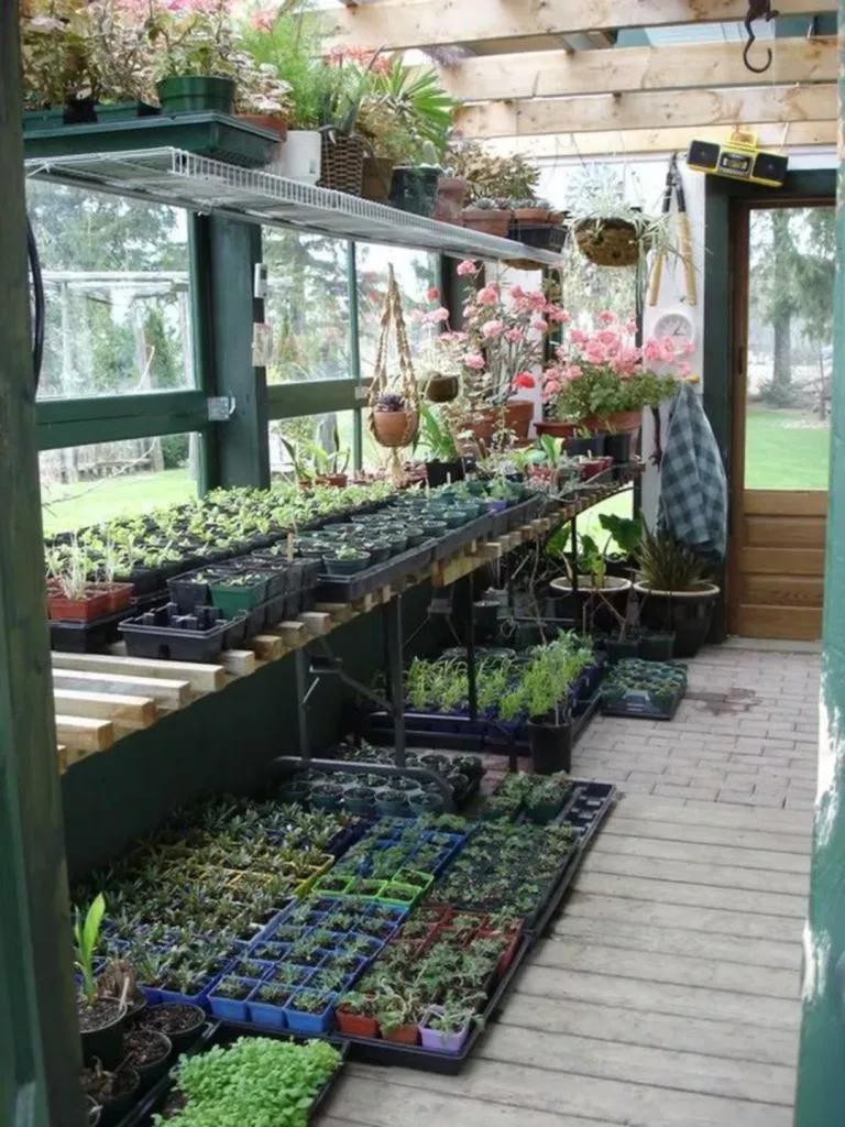 Best 13 Gorgeous Greenhouse Interior Design Ideas Build A Greenhouse Greenhouse Interiors Diy Greenhouse Plans