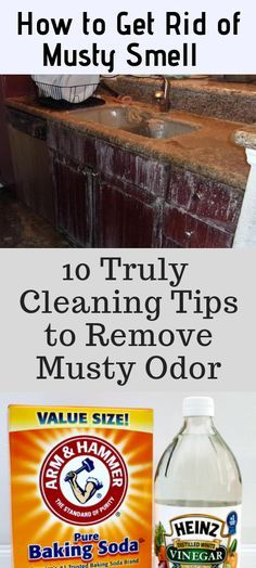 how to get rid of musty smell 10 best ways for musty odor removal rh pinterest com