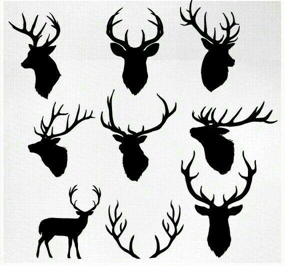 Pin By Adilene Danny On Tattoo Ideas Deer Head
