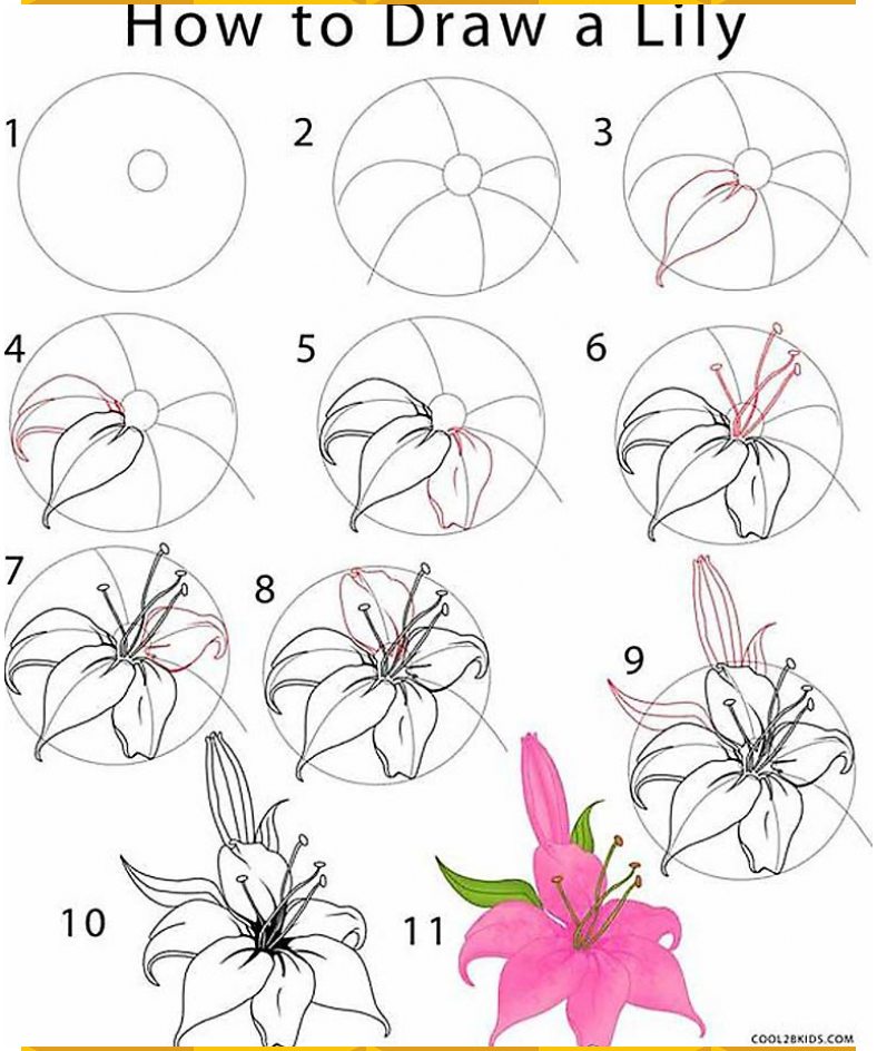 How To Draw Flowers And Turn These Drawings Into Really Cool Wall Art Flower Drawing Tutorials Flower Drawing Flower Sketches