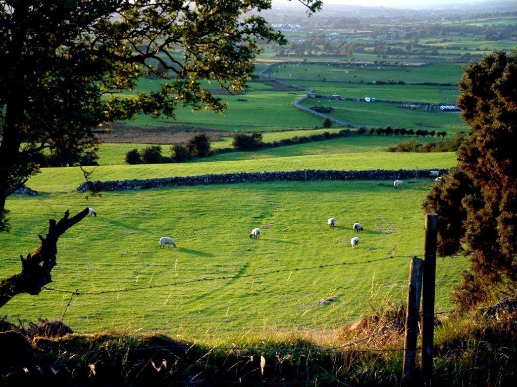 Ballyjamesduff Baile Sheamais Dhuibh County Cavan Ireland County Cavan Cavan Ireland