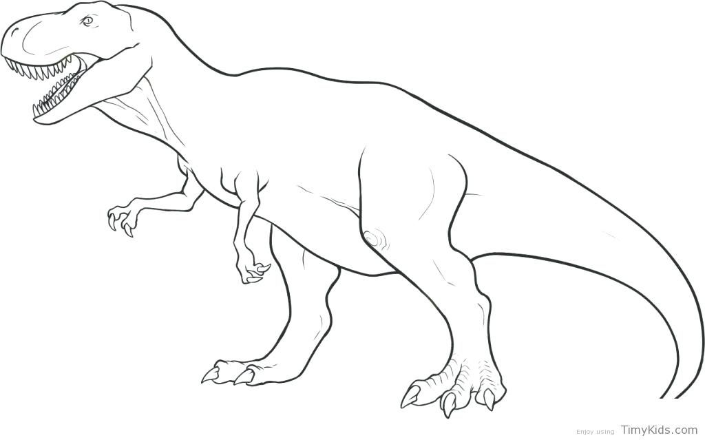 Free Coloring Pages Dinosaurs Free Printable Coloring Pages Free Coloring Pages Dinosaurs Free Dinosaur Coloring Pages Easy Dinosaur Drawing Dinosaur Coloring