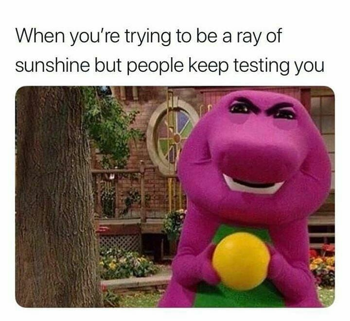 Ray Sunshine People Testing You Daily Life Humor Grappige Memes Memes Grappig Memes