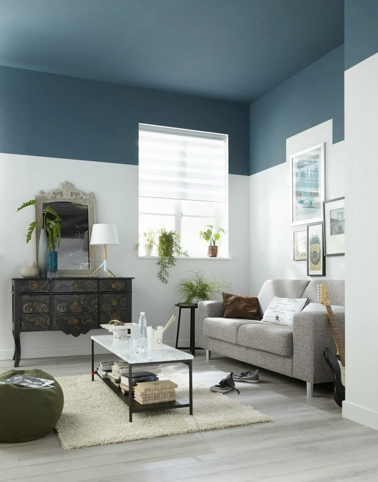 Ceiling Paint Color Ideas And Tips To Revamp Your Ceiling