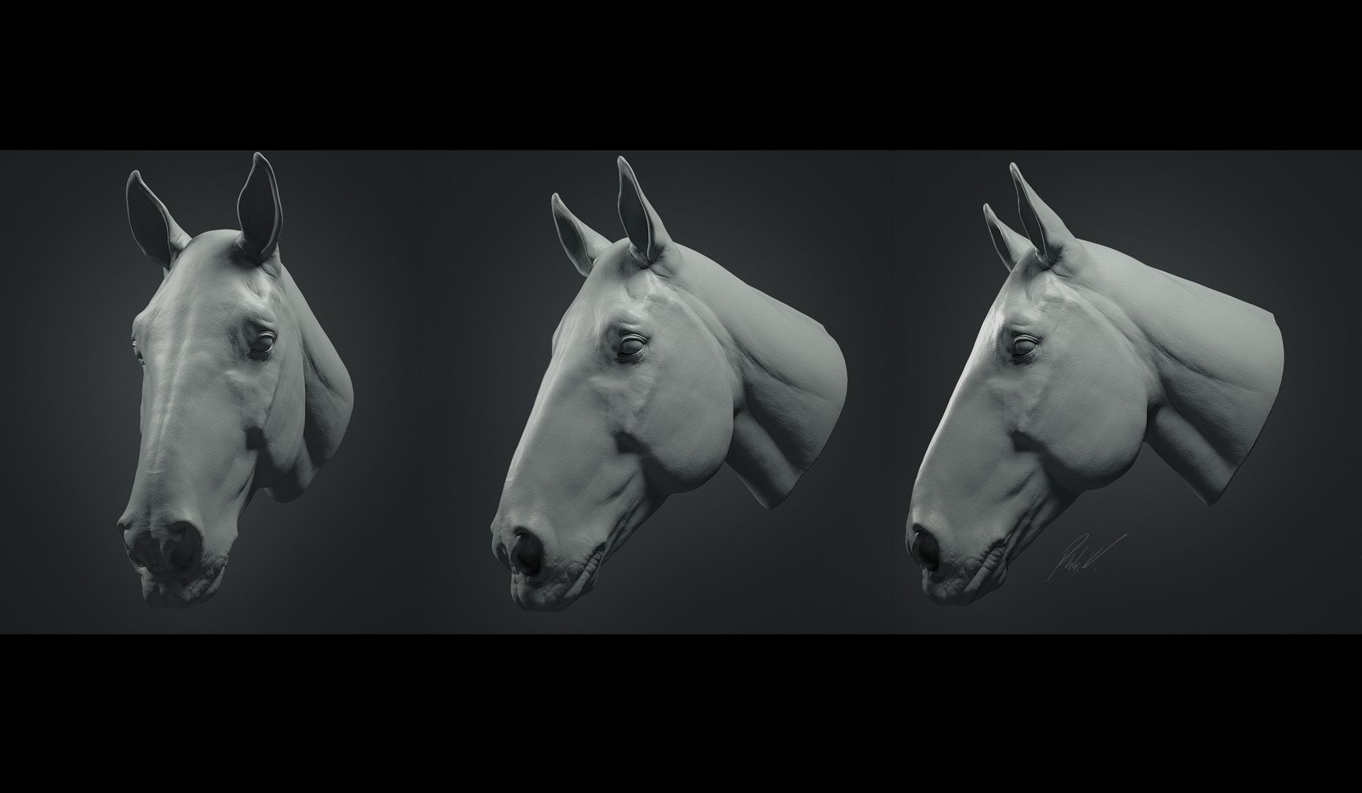 ArtStation - Horse Head Study, Philip Harris-Genois | 3D | Pinterest ...