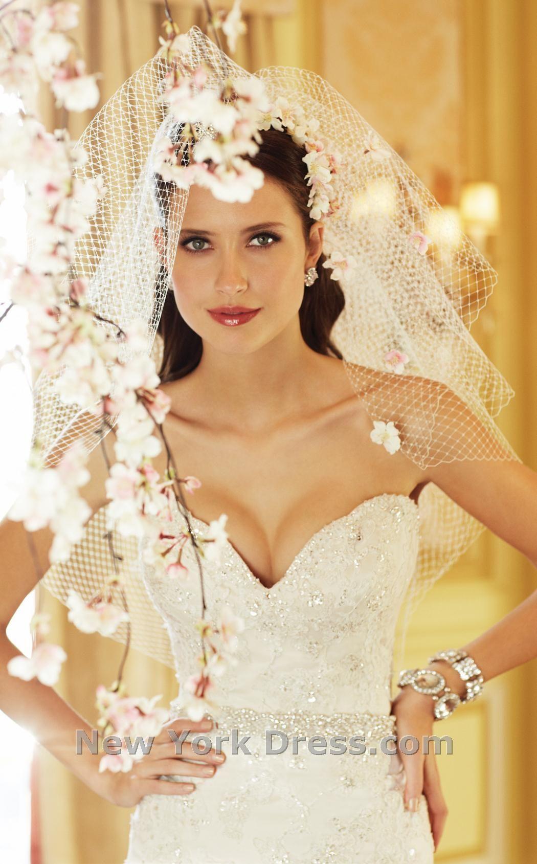 Sophia tolli y thumbnail behind the bridal veils pinterest