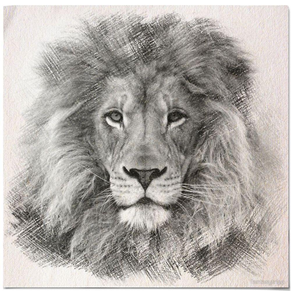 Lion Sketch By Fantasytripp | Concept Art | Pinterest | Lion Sketch Lions And Sketches