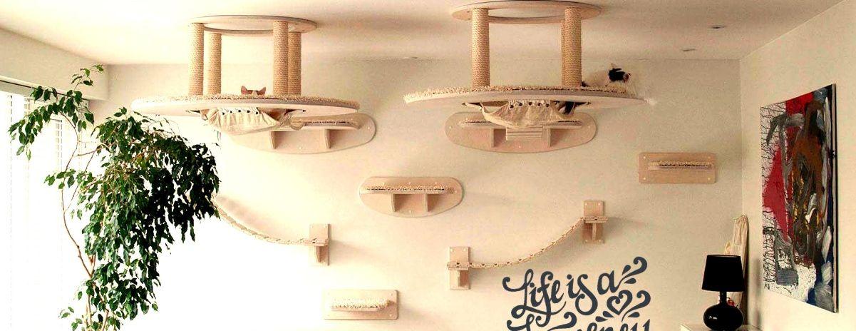 katzenm bel aus deutschland hochwertige schreinerarbeit. Black Bedroom Furniture Sets. Home Design Ideas