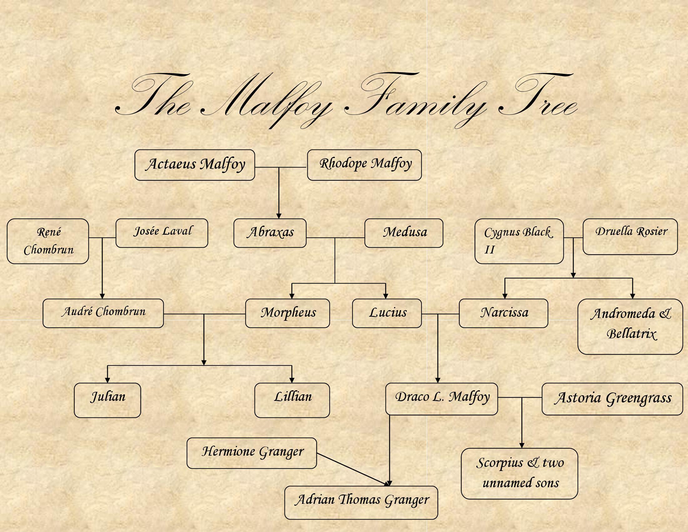 The Malfoy Family Tree Harry Potter Family Tree Malfoy Family Family Tree