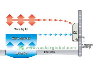 Swimming pool dehumidifier supplier UAE, Oman,Qatar ...